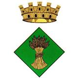 Escut Ajuntament de Granyena de Segarra.